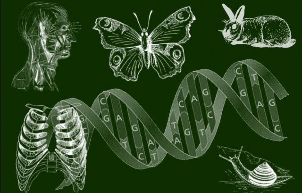 Biologiya